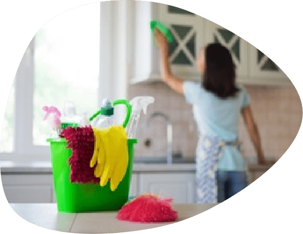 woman regular cleaning house
