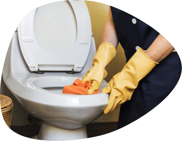 cleaning toilet