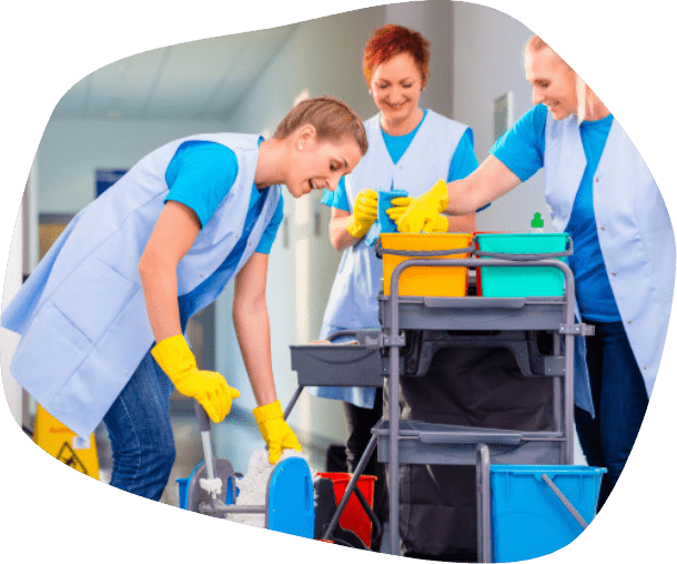 professional cleaning group