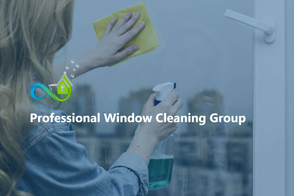 Professional Window Cleaning Group